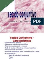 Apresentação Aula 2 Histologia Tecido Conjuntivo