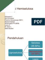 Degradasi Hemiselulosa