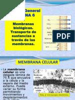 Clase 6 Membranas y Transporte de Sustancias