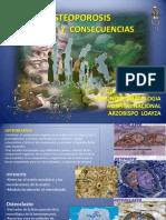 Osteoporosis Lunahuana Copia