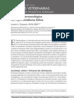 Abordaje Farmacologico Del Hipertiroidismo Felino