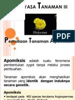Apomiksis(2003)F-