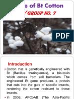 Failure of Bt Cotton