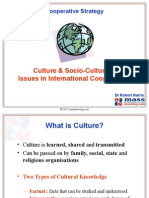 Social & Cultural Issues in International Cooperation