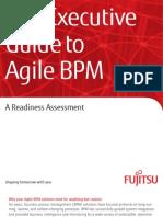 The Executive Guide to Agile BPM