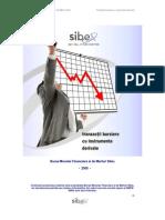 Sibex Instrumente re Derivate