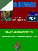 Bio X Animalia