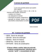 programa_5s