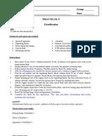 Chemistry Practical 9 ESTERIFICATION