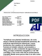 Presentacion Para Expo Sic Ion de Hortalizas