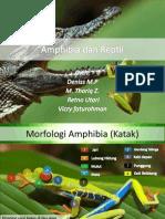 Amphibia Dan Reptil Final Edited