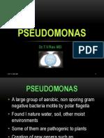Pseudomonas Basics