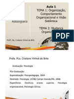 ADM Comport Amen To Organizacional Teleaula1 Slide