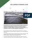Epurarea apelor reziduale in industria carnii