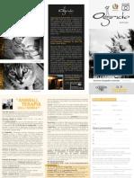 Animali, terapia dell'anima - regolamento concorso