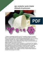 Tehnologia enzimelor poate depăşi problemele de procesare