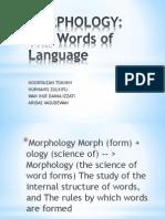 Morphology Linguistic