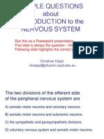Nervous System- Quiz