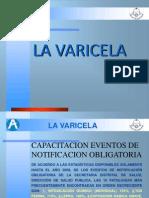 varicela diapositiva