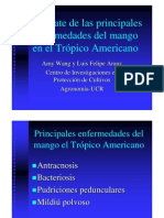 Enfermedades Del Mango