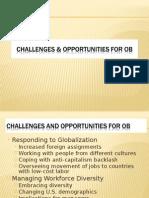 Challenges & Oppurtunities