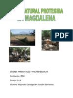 Proyecto La Magdalena Por Alejandra Alarcon G-I-A