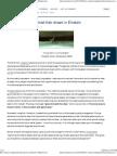 How Zionists Implanted Their Dream in Einstein _ Mondoweiss