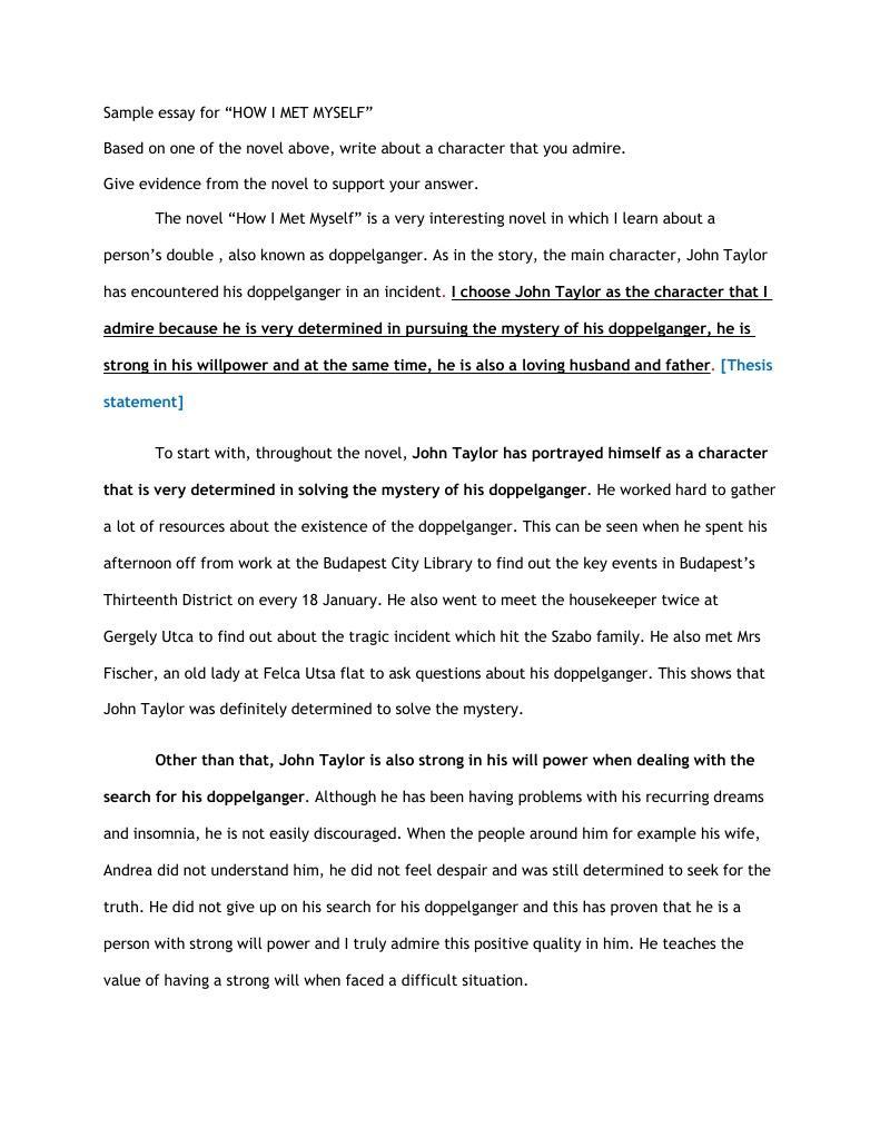 sample essay for how i met myself