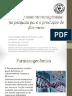 O uso de animais transgênicos na pesquisa para produção de fármacos