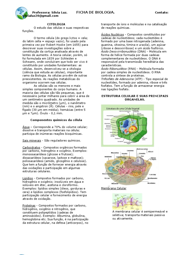 Ficha Biologia Prof Silvialuz 110312