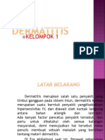 Power Point Dermatitis