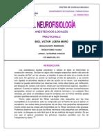 practica2 neruofisio