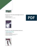 Procesos ITIL V3 de La Fase de Estrategia Del Servicio