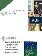 Introducao a Teoria Economica-1 Original