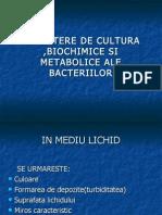 microbiologie-lp-6