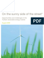 Renewables Report on the Sunny Side of the Street
