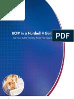 BCFP Ina Nutshell 4Gb