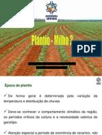 MILHO - Plantio_ Densidade_Espaçamento 2