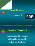 55526630 Audit Evidence