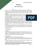 Estudio de Impacto Ambiental_loma