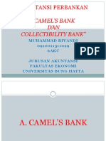 Camels Dan Collectibility