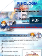 6.5 Union Neuromuscular