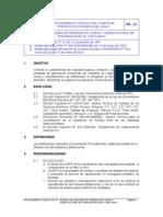 ProcedimientoN21 Version3-290110