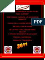 Yeltsin_Erick _De La Cruz Tapia.informe Individual.