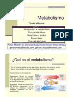 metabolismo y cinetica enzimtica