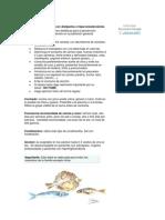 Dieta Para Pacientes Con Dislipemia o Hipercolesterolemia