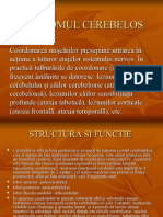 Sindromul Cerebelos Si Vestibular