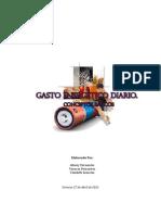 Gasto Energético Diario