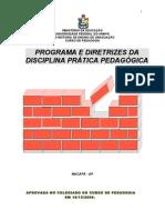 Programa e Diretrizes de Pratica Pedagogic A Ano 2008