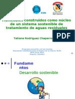 Humedales construidos como núcleo de un sistema sostenible de tratamiento de aguas residuales